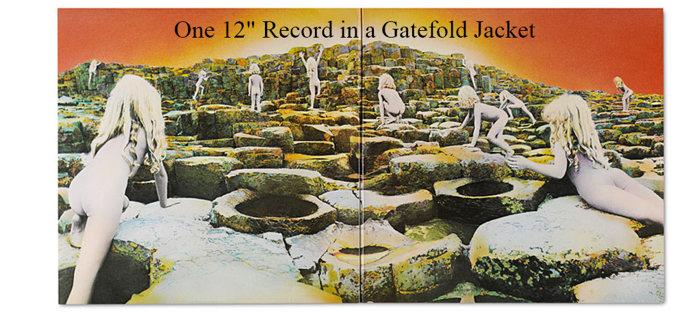 One 12″ Record in a Gatefold Jacket